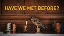 Tom Rosenthal - Have We Met Before? feat. Fenne Lily (Official Video)