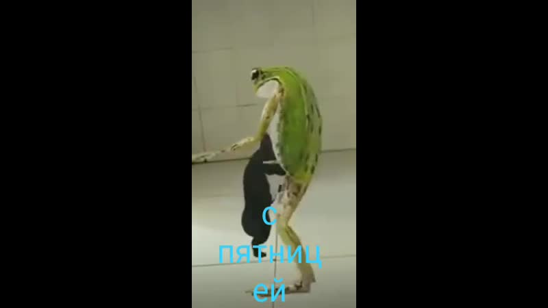 танцуем(☆▽☆)