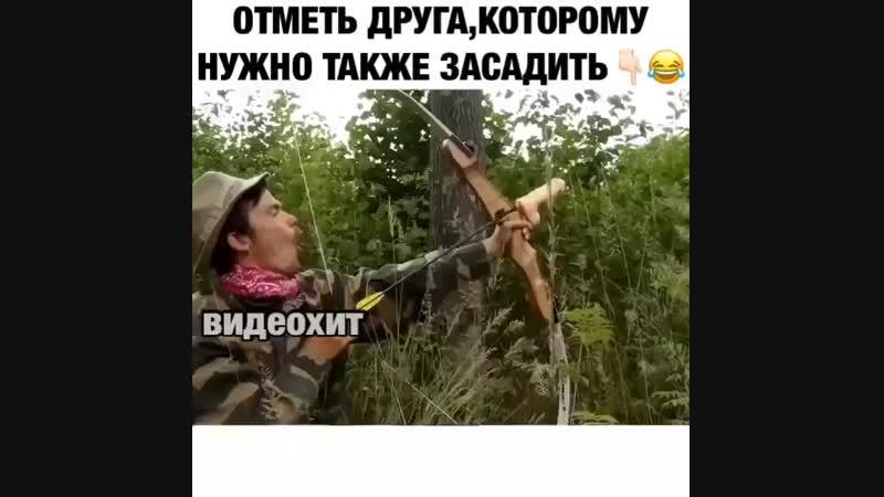 вот так стрела!