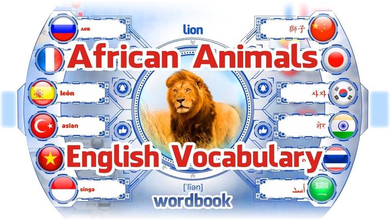 บทเรียน สัตว์ป่าในแอฟริกา | แปลคำศัพท์ภ363