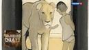 Ромен Гари Вся жизнь впереди / Библейский сюжет / Телеканал Культура