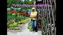 VLOG Чудо томаты Чудо опрыскиватель Чудо малина