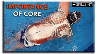 The most important muscles in swimming :: Strong core = fast swimming