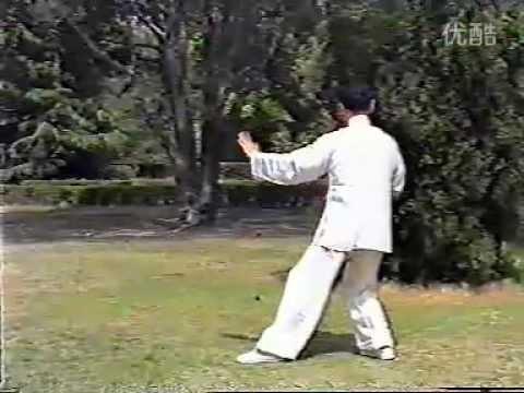 24 Ян Лю Гао Мин запись1990