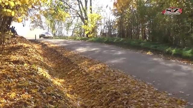 Ave autumn fall