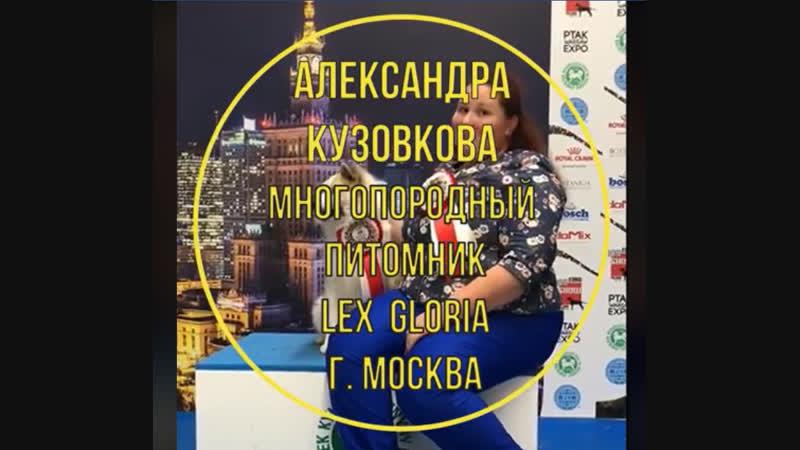 Отзыв с EuroDogShow 2018 от Александры Кузовковой, Питомник LEX GLORIA