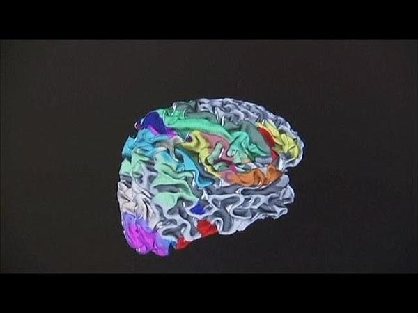 Big Brain: el atlas de nuestro cerebro - science