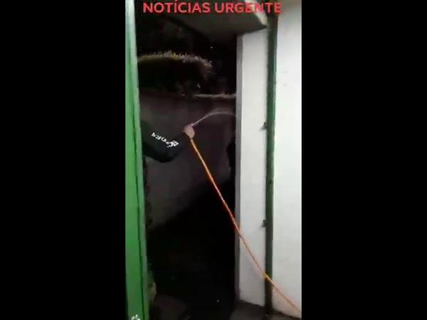 Flagra idoso sendo vítima de maus-tratos em banheiro público de Caxias