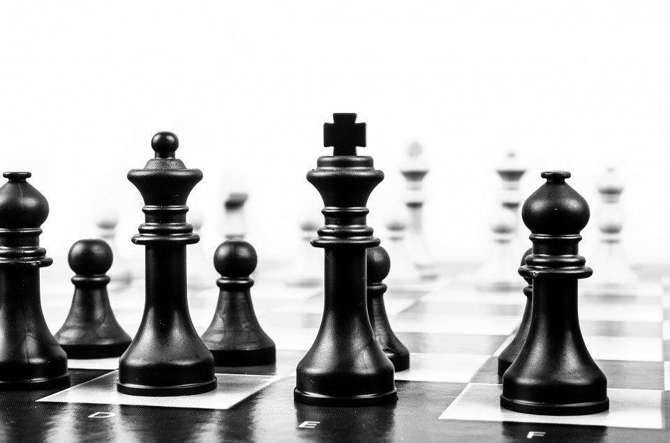 День шахмат отметят в «Зеленой школе мельника Кузьмы» в парке «Кузьминки-Люблино»