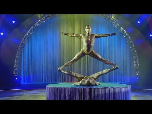 Circus Gymnasts Aerialist   Цирк Гимнасты Воздушная гимнастка на полотнах