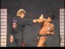 KENPO 01-PROTECTING FANS(G.Master Larry Tatum)