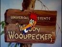 Woody woodpecker laugh