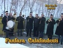 Fanfara Trandafirul din Calafindesti la Dorohoi 2012-2013