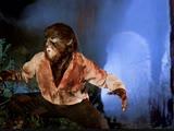 El retorno del Hombre Lobo 1981 Return of the Wolfman Возвращение оборотня (rus)