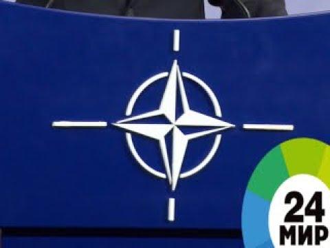 Геном для НАТО