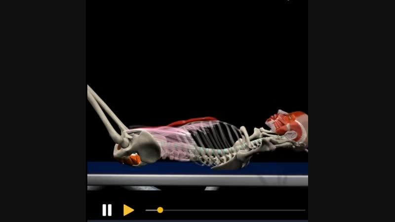 Denissemenikhin Одно из самых эффективных изолирующих упражнений для мышц пресса скручивания лёжа В данном случае показана до