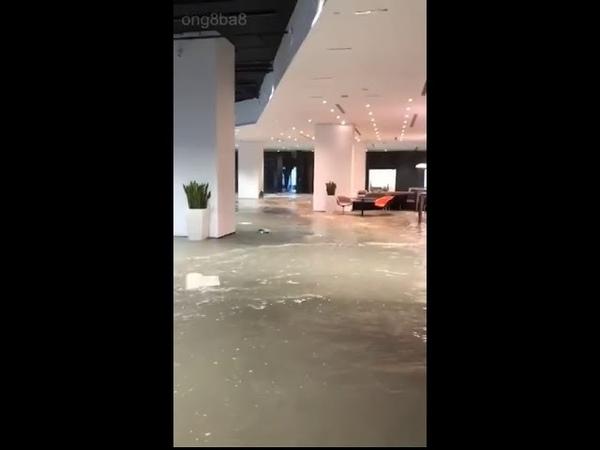 Hong Kong ngày 16 09 2018 Măng Cụt bắt đầu ngang qua Ghê quá 11