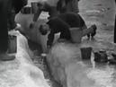 75-я годовщина снятия блокады Ленинграда 2019 Блокада Ленинграда. Кинохроника.