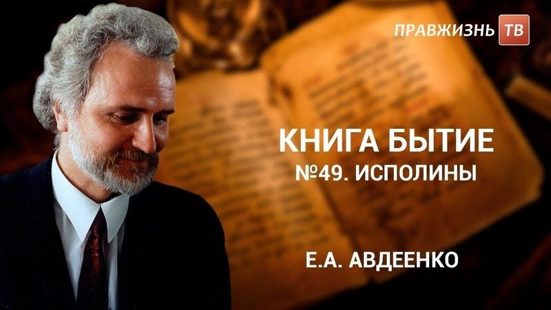 №49. Исполины. Книга Бытие с Е.А. Авдеенко.