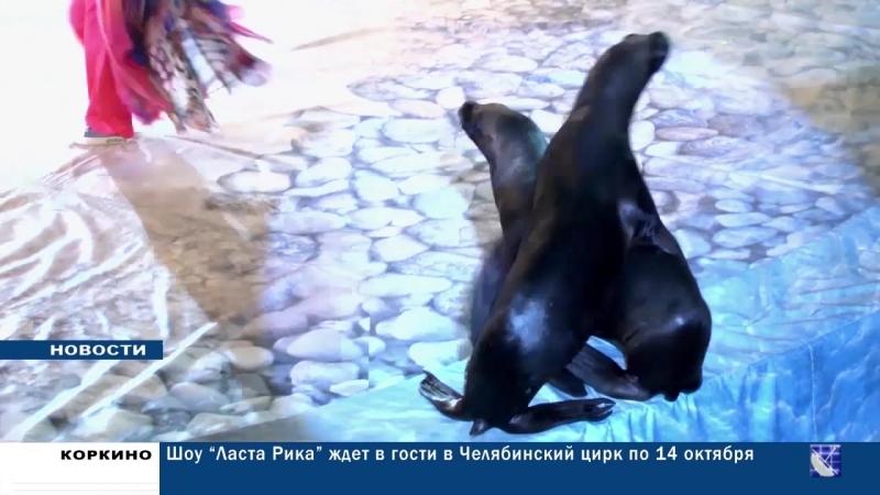 В Челябинском Государственном цирке начались гастроли Шоу Ласта Рика
