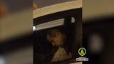 Водитель-наркоман такси под бутиратом. Drug addicted driver taxi. ДТП в Петербурге.