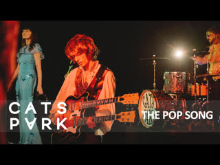 Cats park - the pop song