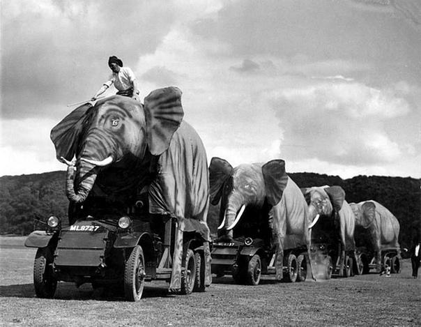 Маскировка английской военной техники под видом слонов (Индия, около 1940 года).