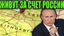 Привычку жить за счёт России так просто не изжить Интересные новости