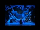 Лебединое озеро Китайский акробатический балет