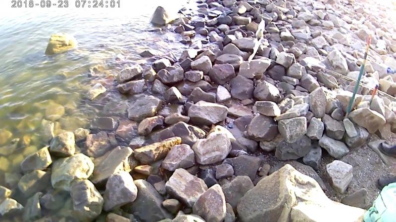 Рыбалка на Азовском море. Ловля тарани с берега.
