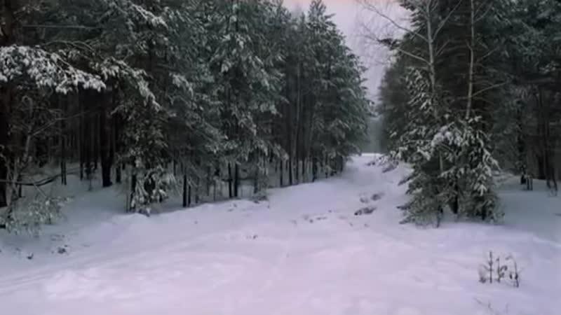 Vladimir Vysotskij Ohota na volkov (MosCatalogue.net).mp4