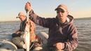 Ловля крупного судака с лодки Рыбалка на судака различными способами Как ловить судака