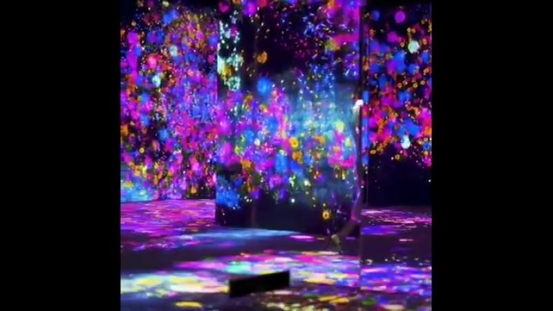 Музей цифрового искусства в Токио перемещает в совершенно иной мир 😍