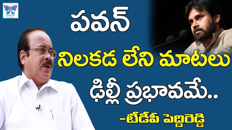 Peddireddi About Pawan Kalyan Counters On TDP || Janasena Party Allaince With BJP || AP Politics