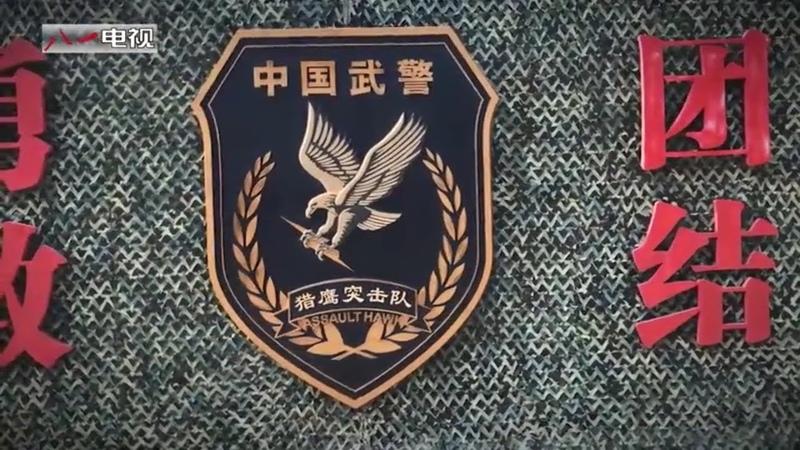 Штурмовая группа Ловчий сокол НВП КНР (中国武警猎鹰突击队)