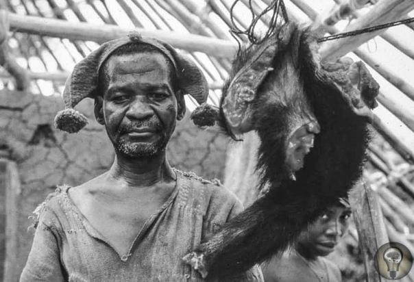 Триумф и гибель «Империи дервишей» Государство лжепророка Махди возникло в Судане в 1881 году после побед суданцев над египтянами и британцами в результате чего могущественная Британская империя