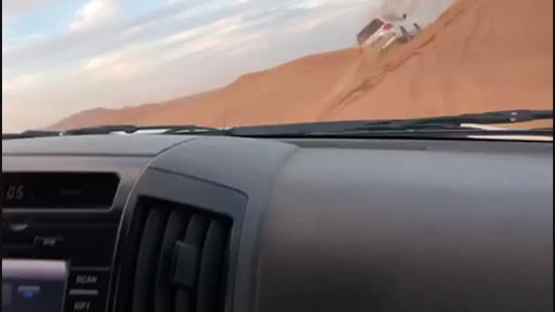 05.12.2018г. ОАЭ. Сафари