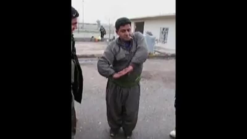 Курдистан - страна талантов (15)