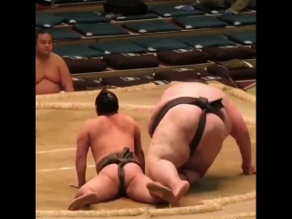 I guess weight classes aren't a thing in Sumo 😂👀