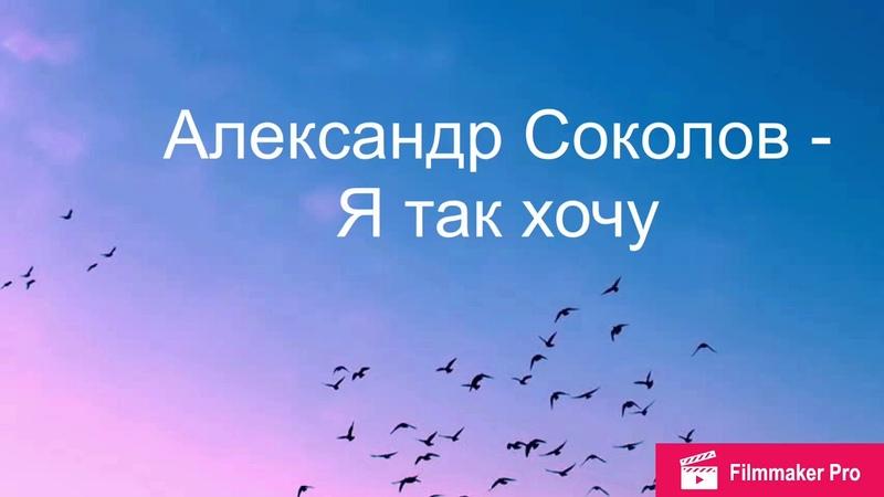 Александр Соколов- Я так хочу Я взлечу словно птица (Lyric Video)