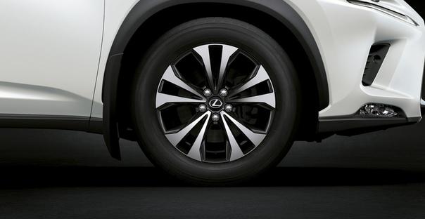 Кроссовер Lexus NX обзавелся спецверсией Blac Vision Фото: компания LexusРоссийские дилеры начали прием заказов на кроссоверы Lexus NX в комплектации Blac Vision, которая предлагается только для