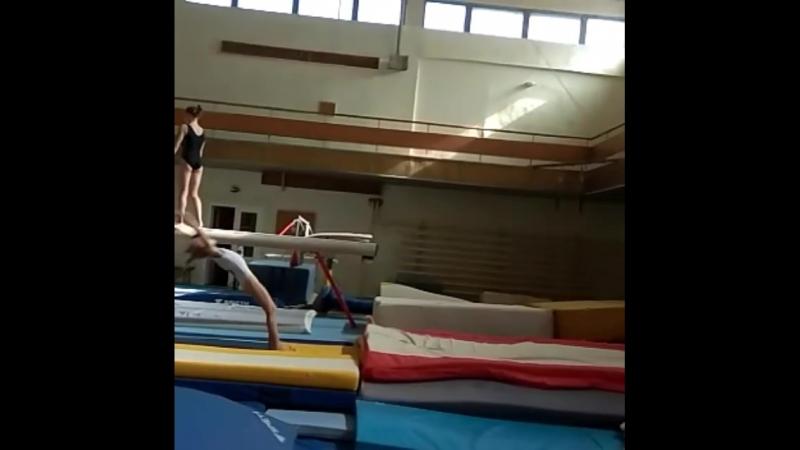Тренировочном сборе по спортивной гимнастике