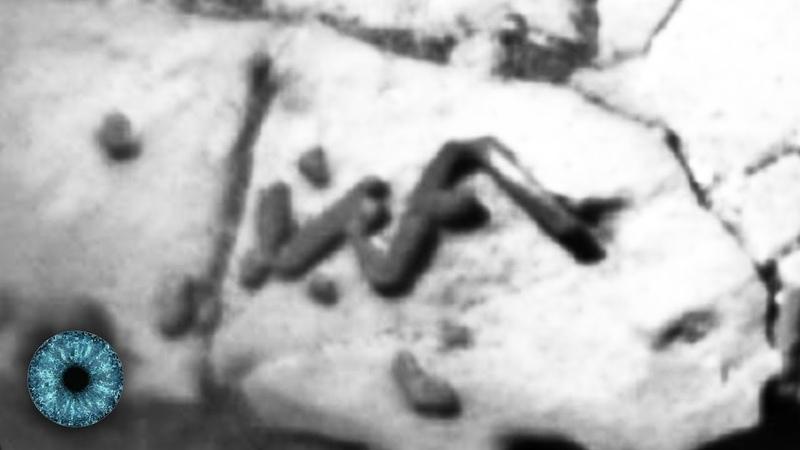Studie: Das sind die Spuren eines Marswurms! Erster Beweis für außerirdisches Leben?
