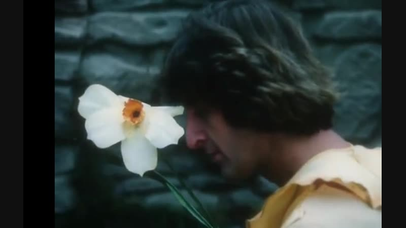 Песенка Нарцисса