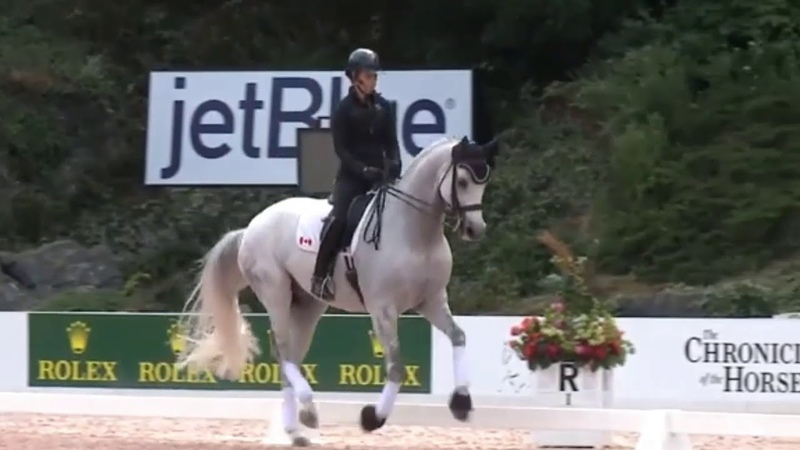 Charlotte Dujardin Masterclass How to Ride Straight Flying Changes in Dressage