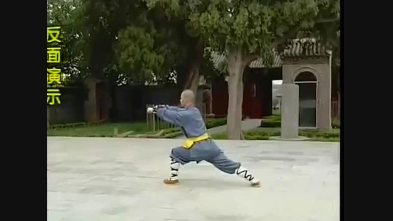 Шаолиньцюань Ба Бу Лян Хугн Цюань 8 шагов лотосового кулака вар с разбором
