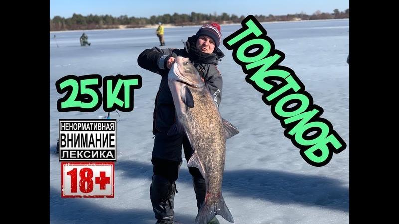 Толстолоб 25 кг. Ловля на гирлянду. Залив Сосны.