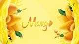 1432-Mango Spoof Pixar Lamps Luxo Jr Logo
