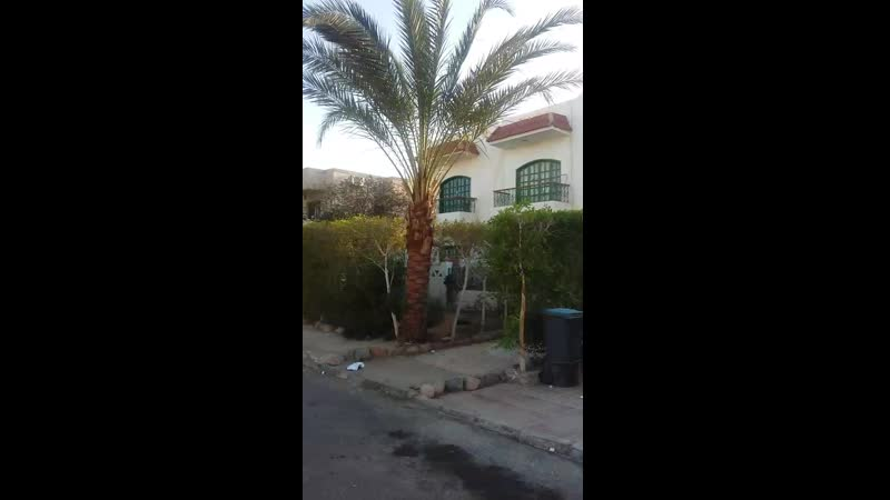 El Bahr (Sea street) Hadaba Sharm el Sheikh