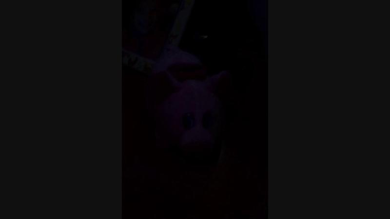 Свинья капилка